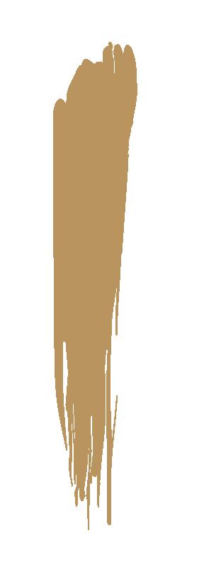 clos de salmudaina logo